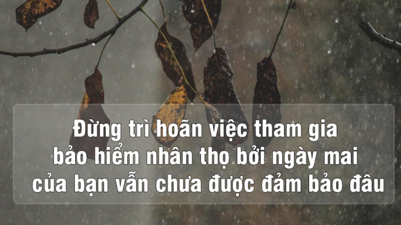 Có nên mua bảo hiểm nhân thọ? Bảo hiểm nhân thọ Dai-ichi Life Việt Nam