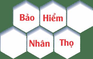 Bảo hiểm nhân thọ dai ichi life Việt Nam